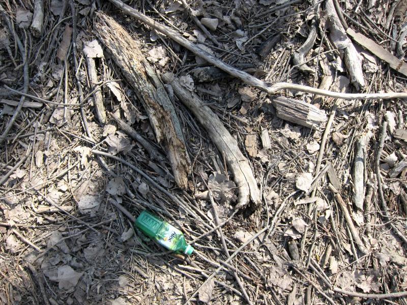 Die Plastikflasche eines Aloe-Drinks auf dem Waldboden zwischen Laub und Ästen