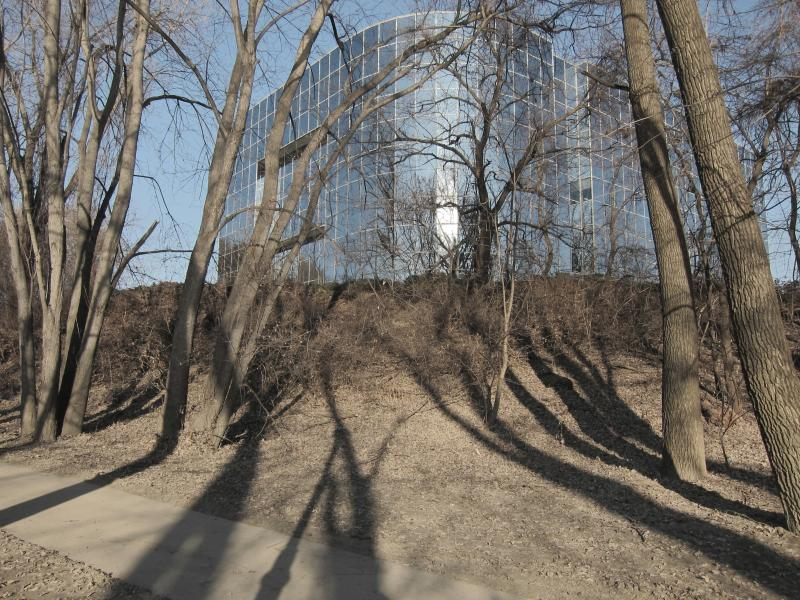 Bäume und ihre Schatten vor einem Bürogebäude mit Glasfassade