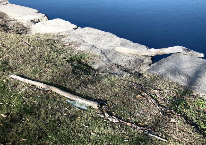 Treibholz und eine leere Flasche am Ufer des Connecticut River